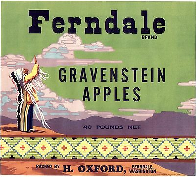 OLD APPLE LABEL BEAUTY: PRAYING INDIAN CHIEF AT CANYON RIM - FERNDALE BRAND