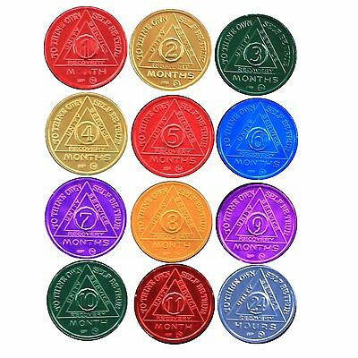 SET of 12 AA Medallion AA Tokens Colored Monthly /  Coins BSP 24hr-11mo