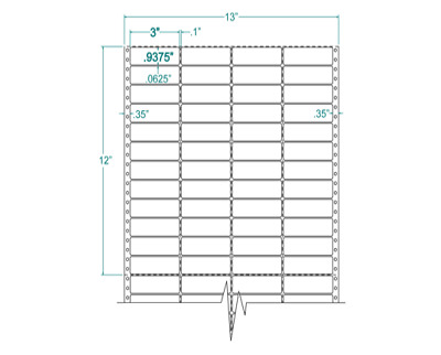 """3""""x15/16"""" Address Labels Pinfeed 4 Across 1"""" Repeat. 140308"""