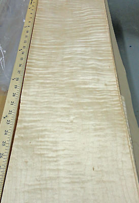 "Curly Maple Figured wood veneer 9"" x 36"" raw no backing 1/42"" thickness ""AA"""