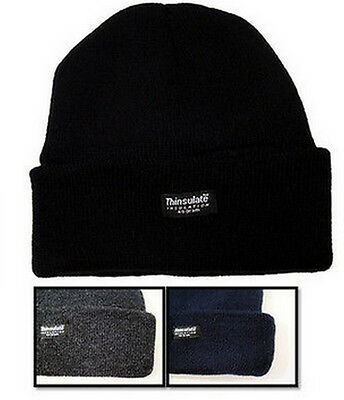 New Boys Thinsulate Knit Beanie Hat Size 6-9 10-13 Years Ski Winter Warm NWT