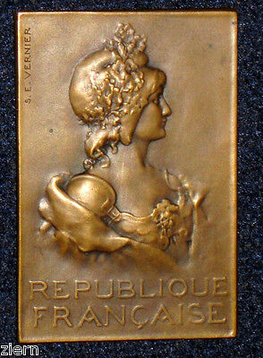 Art Nouveau Marianne The Republic of France French Bronze Medal by VERNIER