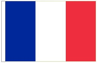 France Sleeved Courtesy Flag ideal for Boats 45cm x 30cm