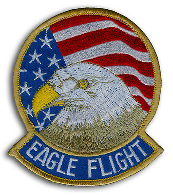 US AIR FORCE F-15 EAGLE FLIGHT Tactical Jet Fighter