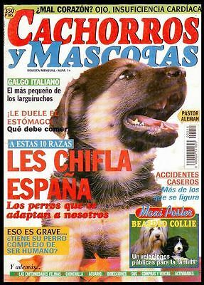 CACHORROS Y MASCOTAS Nº 14 - SPAIN MAGAZINE - Poster Bearded Collie, Galgo