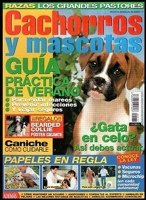 CACHORROS Y MASCOTAS Nº 77 - SPAIN MAGAZINE - Poster Bearded Collie, Caniche