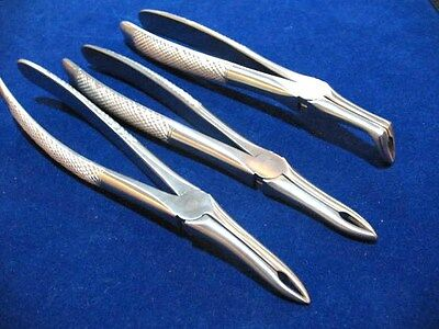 Set Of 3 Dental Tooth Extracting Root Tip Forceps Straight+Curved+Full Curved