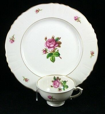 Syracuse VICTORIA Large Dinner Plate & Cup Federal Shape GREAT CONDITION