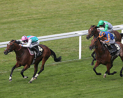 Frankel Ridden By Tom Queally 09 (Horse Racing) Photo Print
