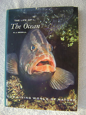 The Life Of The Ocean Book Maritime Nautical Marine (#056)