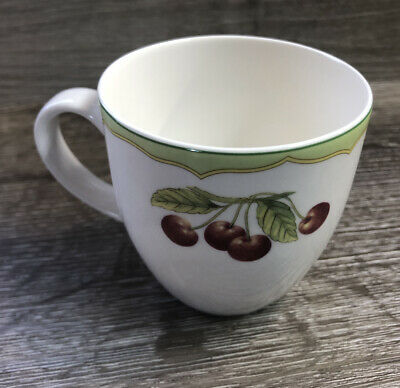 Mikasa, Optima, Fruit Rapture Tea Cup