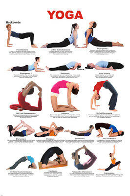 YOGA BACKBENDS CHART POSTER 17 poses EASY TO READ HOW-TO new 24X36
