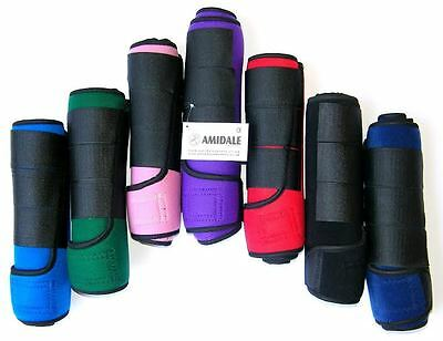 Medicine Brushing Support Boots Horse Equestrian New Colors Amidale Sports Bnwt