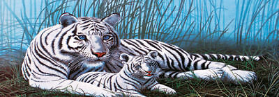 White Tiger # 5 -Rear Window Tint-Murals-Decals-Graphics