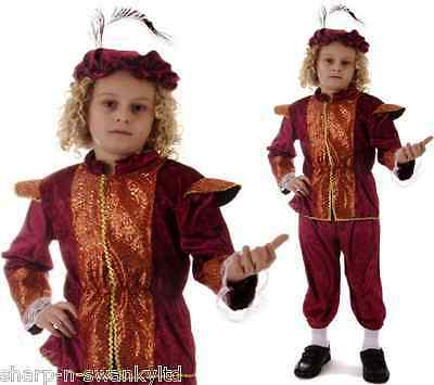 Boys Tudor Shakespeare Historical Book Week Fancy Dress Costume Outfit 4-12 yrs