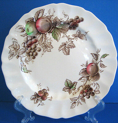 "Harvest Time Brown Multicolor Johnson Brothers Scallop Dinner Plate 10"" excel"