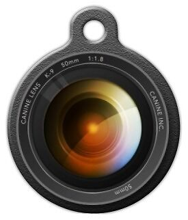 CAMERA LENS - Custom Personalized Pet ID Tag for Dog and Cat Collars