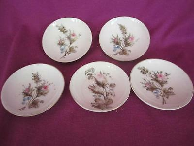 c8  5 Victorian Handpainted Floral Ceramic Salt Dishes Butter Pats