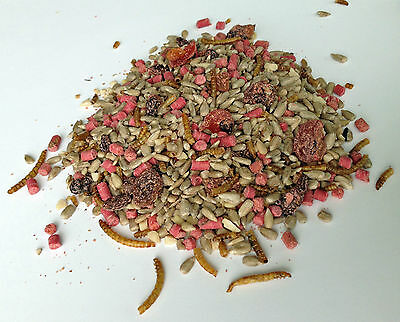 Wild Bird Special Blend Hearts, Suets, Fruit, Peanut Granules, Mealworms 12.55Kg