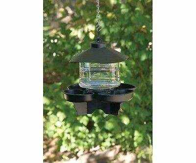 First Nature 3039 Clear Lantern Bird Bath Waterer