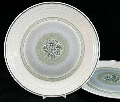 Royal Doulton EARTHFLOWER 2 Dinner Plates LS1034 GOOD CONDITION light use