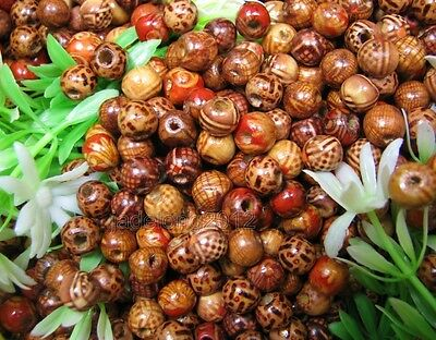100pcs Mixed Color Wood Loose Round Spacer Charms Beads 10MM NH515