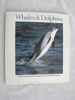Whales And Dolphins Book Maritime Nautical Marine (#174)