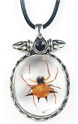 Spiny Spider Necklace in Lucite with Metal Setting JSD0605 NEW!!