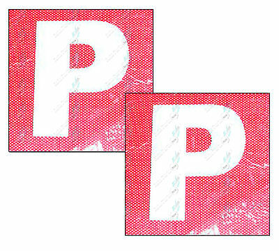 See Through Probationary P Plates 15cm x 15cm White P Red Background One Pair