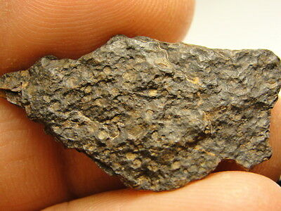 NWA 7980 Official Meteorite - L3.10-W2 - G415-0014 - 2.48g COA - Extremely Rare