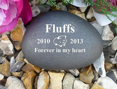 Guinea Pig - Personalised Memorial Pebble (Stone Effect) Completely Weatherproof