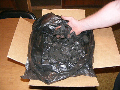 Anthracite Coal (25lbs.)