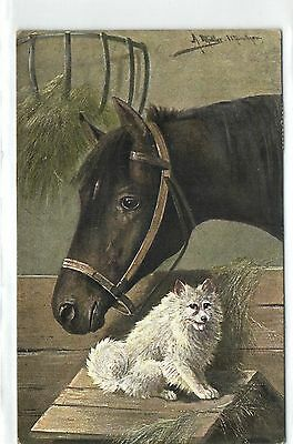 Horse with white Dog,Signed by Müller,Undivided,Used,1904,Old Postcard