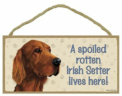 Spoiled Rotten IRISH SETTER Dog 5 x 10 Wood SIGN Plaque USA Made