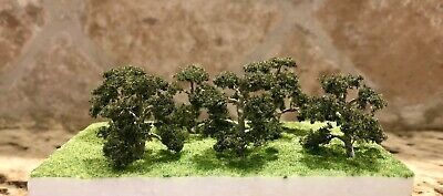 "Jtt Scenery 94347 Professional Series 1""  Live Oak Tree  6/pk  Z-Scale  Jtt94347"