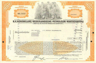 Royal Dutch Petroleum Company   oil stock certificate share Netherlands N.V.