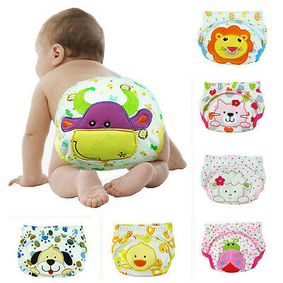 Cute Toddler Underwear Cotton Potty Training Pant L Size ( 1 - 2 Year Old )