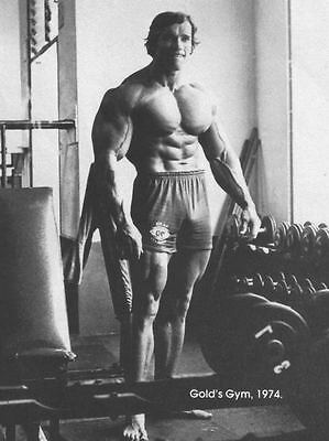 Arnold Schwarzenegger Bodybuilding Photo Poster Wall Print Arnie Mr Universe 01