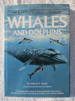 Whales And Dolphins Book Maritime Nautical Marine (#061)