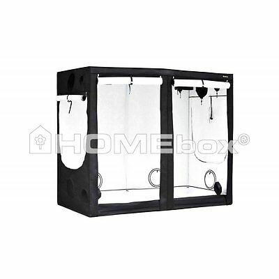HOMEbox Evolution R240 240x 120x 200cm Grow Eastside Impex Growbox Growschrank