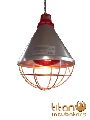 Poultry Heat Lamp With HI-LOW Setting & 250w Red Bulb Included Pig, Puppy Kitten