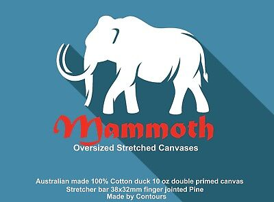 Stretched Canvas KITS 1510x1200mm Stretcher bar 38x32mm Canvas made in Aust