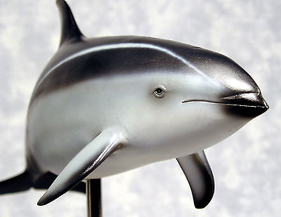 Pacific White Sided Dolphin 1/10 Scale Poly Resin Figurine Display Model - New