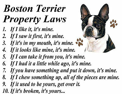 PARCHMENT PRINT BOSTON TERRIER CLOWN DOG BREED PROPERTY LAWS FRAMABLE ART PRINT