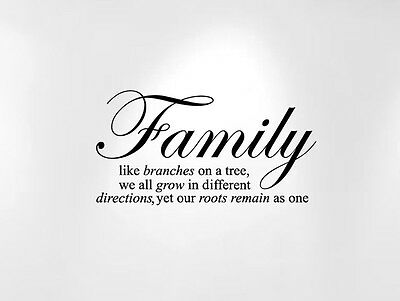 """Family Like Branches on a Tree Vinyl Wall Baby Quote Decal (24"""" Wide x 12"""" High)"""