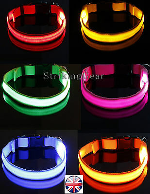LED Light-Up Flashing XS Little Dog Cat Collar Full Plain 8 Colours - SG-UK
