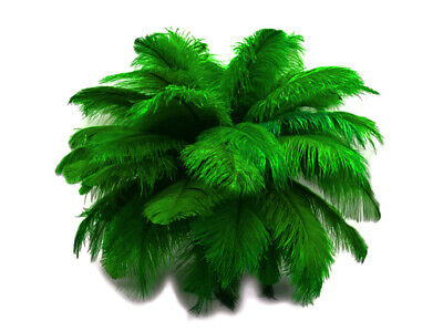 "200 Feathers - 9-13"" Kelly Green Ostrich Drab Wholesale Bulk Centerpiece Costume"