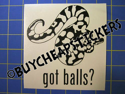 Ball Python Snake Decal Got Balls? Vinyl Decal - Sticker 5x5 - Any Color