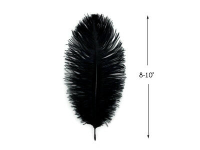 "Ostrich Feathers 9-10"" Black Ostrich Feathers 10 Pieces"