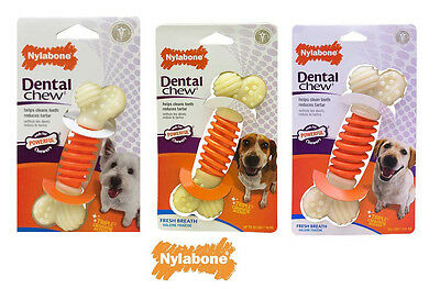 Nylabone Pro Action Tough Dog Bone Dental Chew Toys